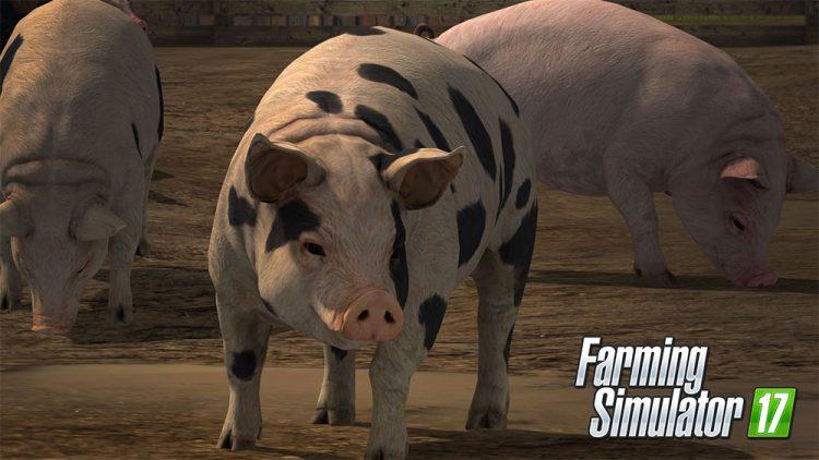 farming-simulator-17-pig