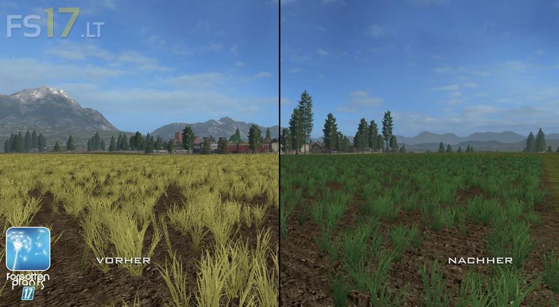 forgotten-plants-wheat-barley-2