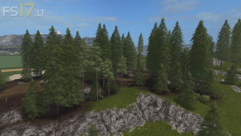 pines-3