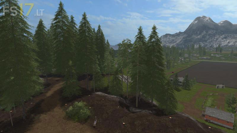 pines-4