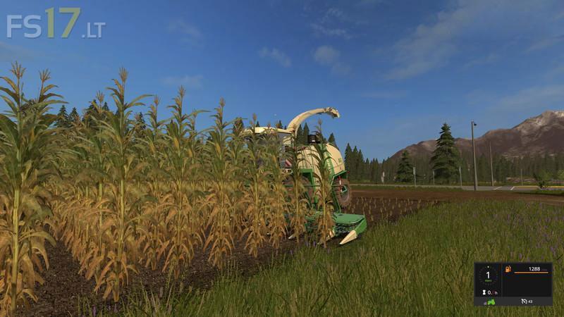 corn-texture-1