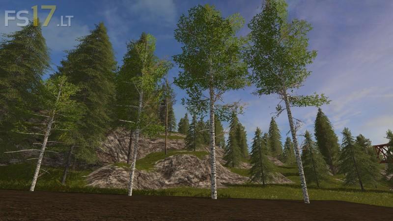 harvester-birch-2