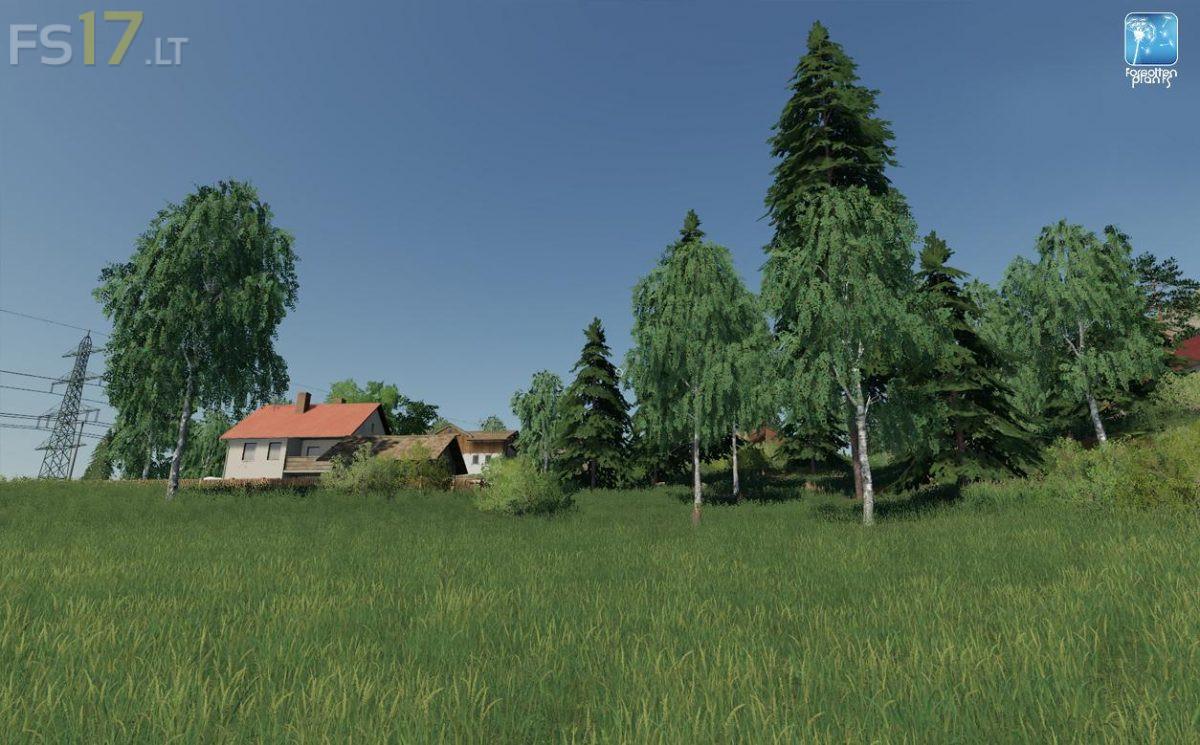 Forgotten Plants Landscape V 1 0 Fs19 Mods